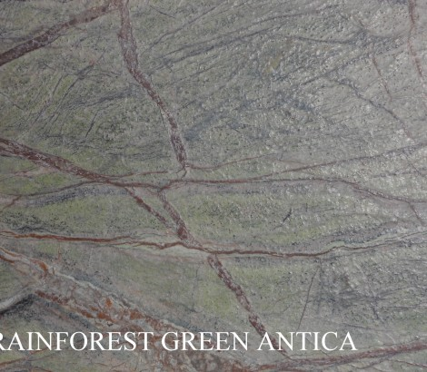 Rainforest green antica1