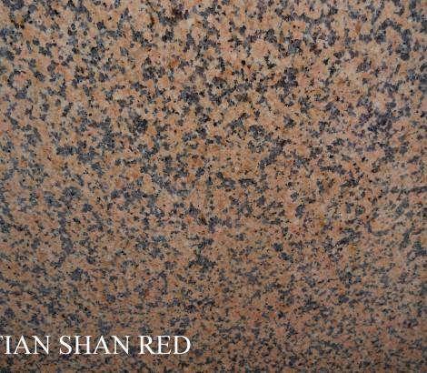 Tian shan red 1
