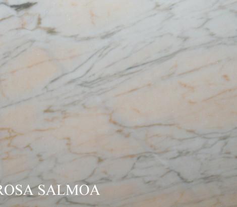 Rosa salmoa